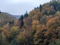 Ősz a hegyekben - Fedezze fel, hogyan néz ki a hegy az őszi szezonban!