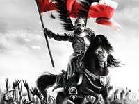 рицар на кон