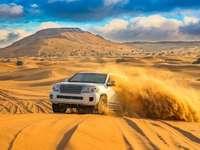 sivatag, szafari - m ........................