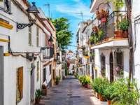 Malaga Narrow Alley - Malaga Narrow Alley