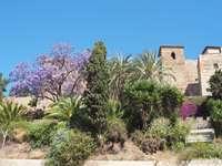 Málaga na Espanha - Cidade de Málaga na Espanha