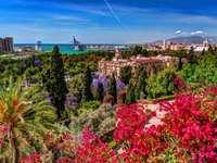 Malaga mit blühender Vegetation - Malaga mit blühender Vegetation