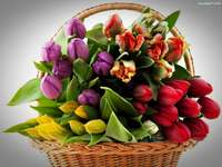 multicolored tulips in a basket - m .....................