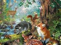 ζώα στο δάσος