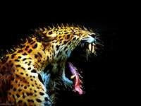 Huisdieren - leeuw leeuw leeuw leeuw leeuw leeuw of luipaard