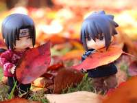 Itachi and Sasuke among the autumn leaves - Itachi and Sasuke among the autumn leaves