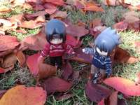 Itachi and Sasuke among autumn leaves - Itachi and Sasuke among autumn leaves