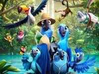 Film animato