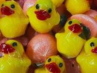 pato de goma amarillo y rojo