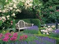 reclusão no jardim com flores - m /................../
