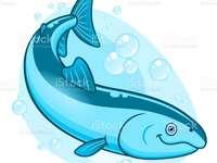 letra S salmão - aprendendo a letra S salmão