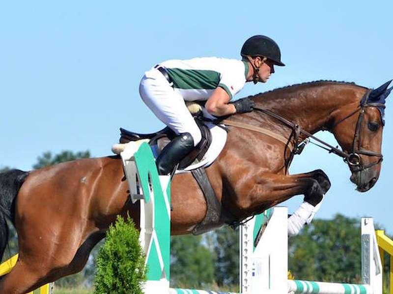salto de cavalo - m /................../ (10×8)