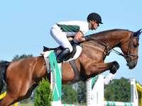 salto de cavalo