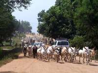 Juba ..... - Juba (anglais Juba, arabe: جوبا) - la capitale et la plus grande ville du Soudan du Sud sur la m