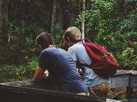 deux hommes s'appuyant sur une clôture - Des amis près d'une forêt.