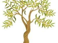 Olivträd - Gå med i pusselbitarna och skapa bilden.