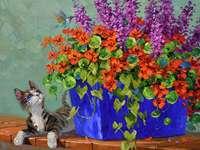 Malba květinářství s mladou kočkou