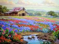 Målninghus med fält av blommor - Målninghus med fält av blommor