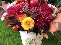 Flores de outono - Crisântemos, arbustos, dálias