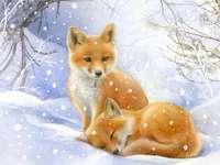 Mazaná liška, Liška podšitá
