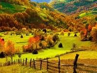 Höstens färger - Jag har bifogat en bild som är höstens färger