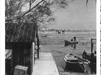 Port du Pin - Port du Pin v Châteauneuf-les-Martigues - 3D186