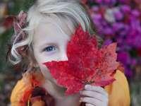 dziewczyna trzyma czerwony liść klonu - Pensylwania, Stany Zjednoczone