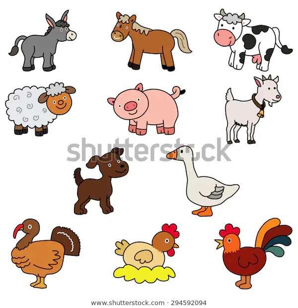 Milyen típusú állatok - Állítsa össze a puzzle-t, és hajtsa végre a megfelelő jelet (3×4)
