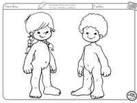 Differentiatie van het lichaam - Herken en reproduceer de delen van het menselijk lichaam (jongen en meisje)