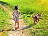 mit dem Hund spazieren gehen - m ...................