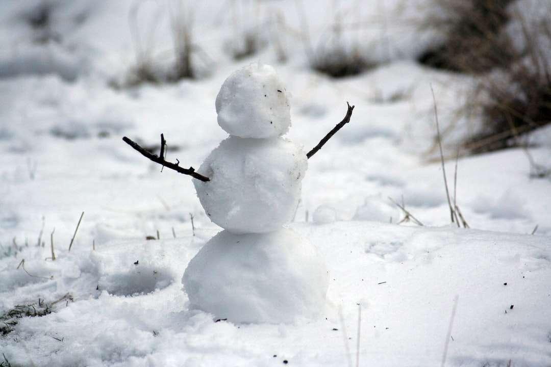 Foto de muñeco de nieve con palitos en campo de nieve - Muñeco de nieve sin rostro. Bend, Estados Unidos (3×2)