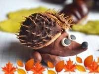 Veselý ježek