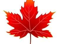 herfstblad - het beeld is een rood herfstblad.