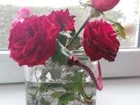 Rózsa - Ezen a képen van egy rózsa, amelyet újra elkészítesz