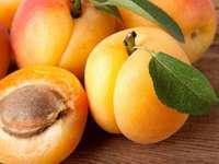 fruta de damasco - deliciosos e lindos damascos