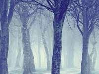 Студена сладка зима - Коледа, зима, зима!