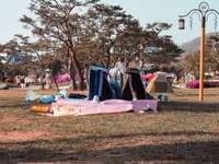 dva lidé leží na růžové podložce v parku - Cheonan, Jižní Korea