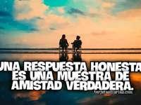 Een echte vriendschap - Een eerlijk antwoord is een blijk van echte vriendschap.