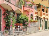 a pink tenement house - m ......................