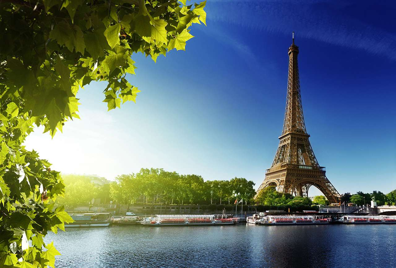 Eiffel Tower - Eiffel Tower in Paris (10×7)