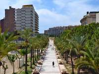 Cidade de Benidorm na Espanha - Cidade de Benidorm na Espanha