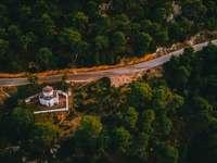 въздушен изглед на зелени дървета през деня - Горски параклис. Саламина, остров Саламин, Гърция