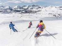 2 person in yellow jacket and blue helmet riding ski blades