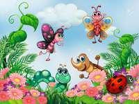 Invertebrate animals - Invertebrate animals are those that do not have bones.