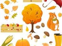 Pád učení o učiteli orabi - Sezónní podzimní učitel oorabi