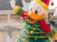 DONALD DUCK - Kaczor Fauntleroy Donald (Donald Fauntleroy Duck, owned by Paperino) - son of Kaczor Kwaczymon and H