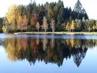 Waldsee (Lindenberg im Allgäu) Germania - Waldsee (Lindenberg im Allgäu) Germania