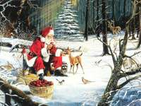 """Santa Claus with the forest animals"""