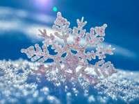 Schneeflocke - Winterschneeflocke für Kinder - viel Spaß