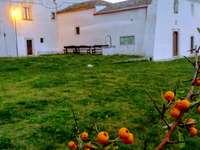 Masseria apuliana Itália - construção rural típica ligada à grande propriedade Puglia Itália